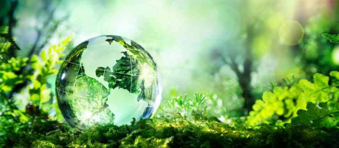 ecologie-solutions-825x510