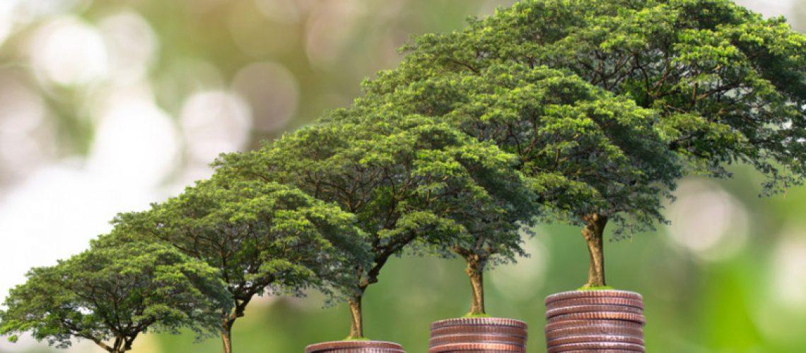 finance verte